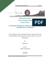 Kidist Hailu.pdf