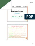 Petroleum System P1
