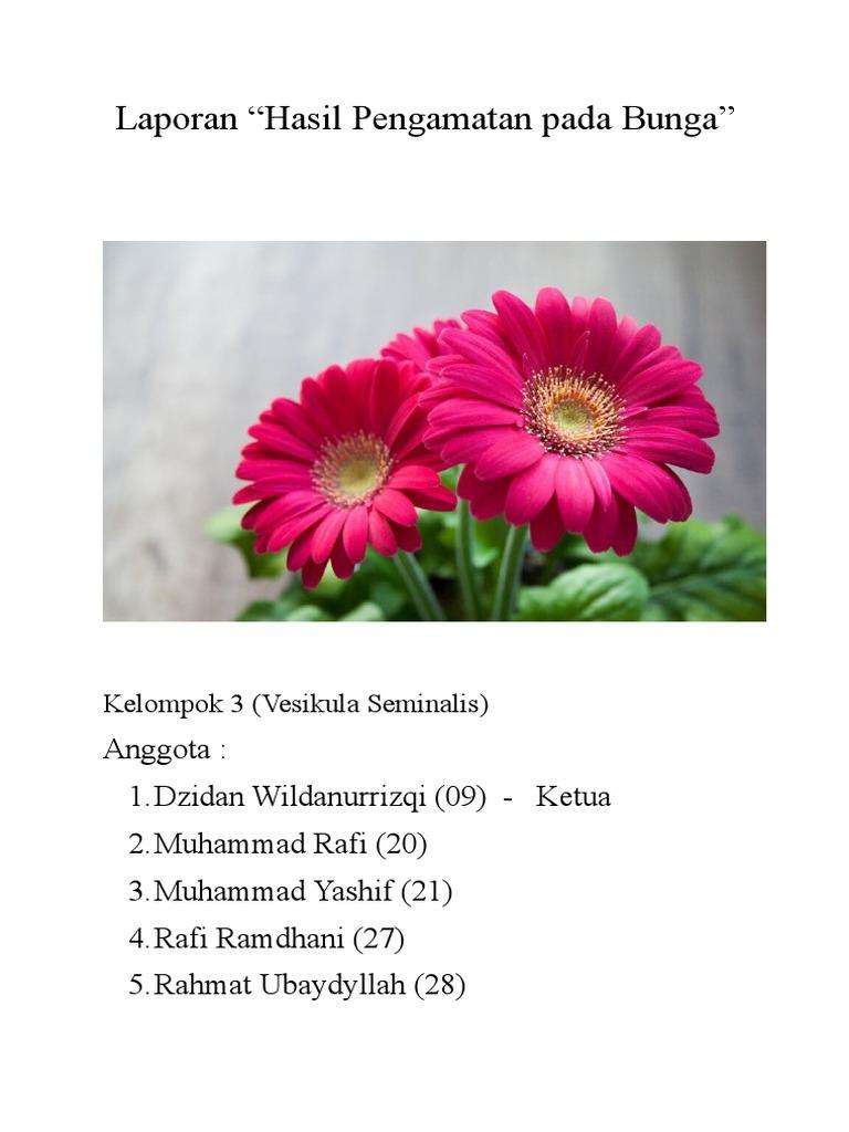 Gambar Bagian Bagian Bunga Kertas Dan Cara Penyerbukannya