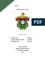 PROGRAM AUDIT.doc