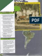 T 7 - Diversidad de ecosistemas.pdf