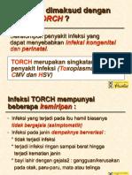 Kuliah 2. TORCH - STFB.ppt
