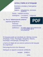 PPT Sistema, norma y habla.ppt