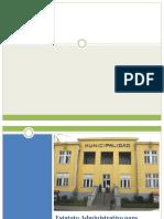 Estatuto Municipal