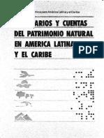cuentas de patrimonio natural.pdf