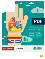 Informe Ejecutivo II Encuesta Nacional