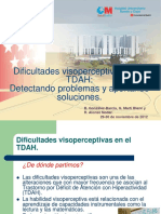 presentacion visopercepcion.pdf