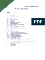 Teoría de la Organización.doc