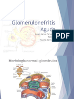 glomerulonefritisaguda-130506224544-phpapp02