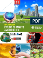 Dip Eia Estudio de Impacto Ambiental