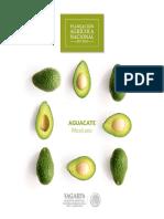 Potencial-Aguacate.pdf