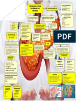 enzimologia pancreas