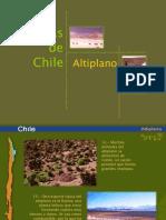 BiomasChile Altiplano
