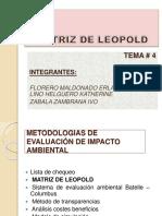 grupo4matrizdeleopold-150510024128-lva1-app6891.pdf