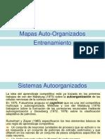 Entrenamiento SOM.pdf