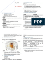 Diseño de Estructuras Minera1