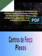 plexoscentrosdefora-1221749905275451-9.ppt