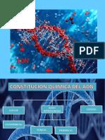 3.- ADN - REPLICACIÓN