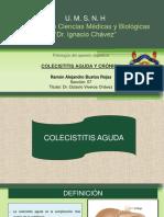 Colecistitis aguda y crónica_Ramón Alejandro Bustos Rojas_Sección 07