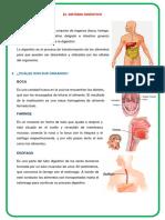 DipTico Digestivo