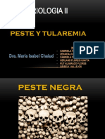 Pestes Tularemia