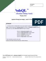 PEDS QL 13-18 TH.docx
