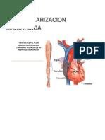 Revascularizacion miocardica