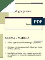 Xilologia General Dendrologia 2018