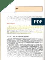 langman capitulo 16.pdf