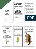 leaflet-anak-demam-uyi.pdf