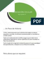 Fabricacion Celular