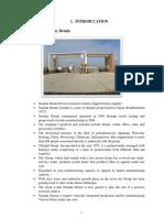 Nandan denim report