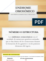 SINDROME-CROMOSÓMICO