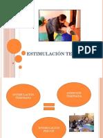 Estimulacion Temprana, Desarrollos y Modelos