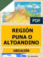 región puna