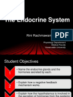 Faal Endokrin Metabolik