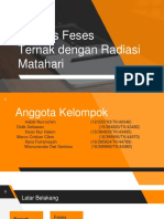 PPT-Biomassa