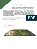 Reporte Manejo Agroecologico