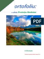 Portofoliu-Protectia Mediului.