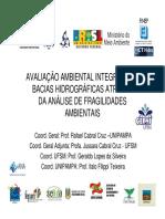 avaliao_ambiental_integrada_de_bacias_hidrogrficas_atravs_da_anlise_de_fragilidades_ambientais.pdf