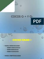 Cocos G +