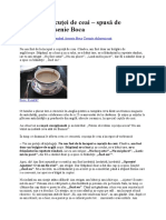 Povestea ceșcuței de ceai.docx