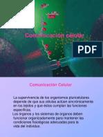 Biofisica comunicacion intercelular
