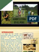 LA-AGRICULTURA-EN-EL-PERU.pptx