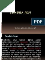 Leukemia Dr Apik