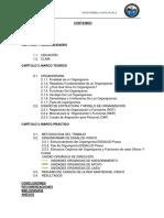 Informe Essalud Org