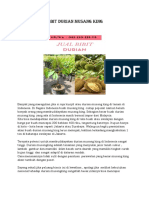 HP/WA*082-220-228-118, harga anak pokok durian musang king, jual bibit durian musang king di blitar