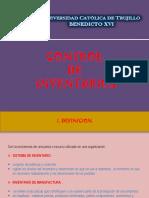 Control de Inventarios - Mypes