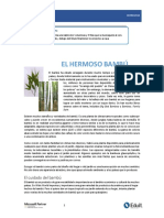 CUIDADO DE bambu