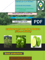 Limon Tahiti EXPO